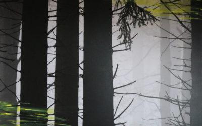 [ONLINE] Samstag, 20.03. – Nebelwald: Mit Waldphilosophin Samya in die Natur eintauchen